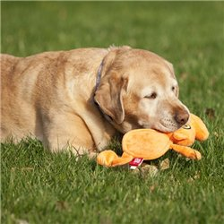 Интернет-зоомагазин Pet Gear - Страница 3 Ef0ed2e01175