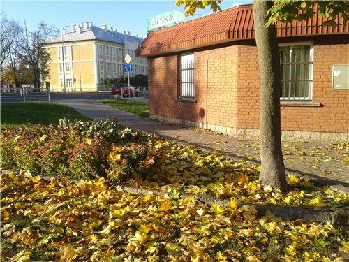 Осень, осень ... как ты хороша...( наше фотонастроение) - Страница 7 5f10acd08876