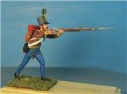 VID soldiers - Napoleonic austrian army sets 60027a4e523et