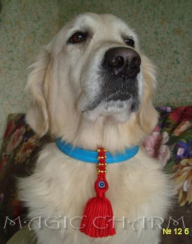 Magic Charm - ошейники, обереги, украшения и аксессуары для собак 541f28b99f4c