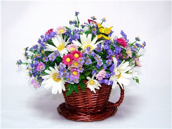 Поздравляем с Днем Рождения Елену (veleny) C1aac775fef3t