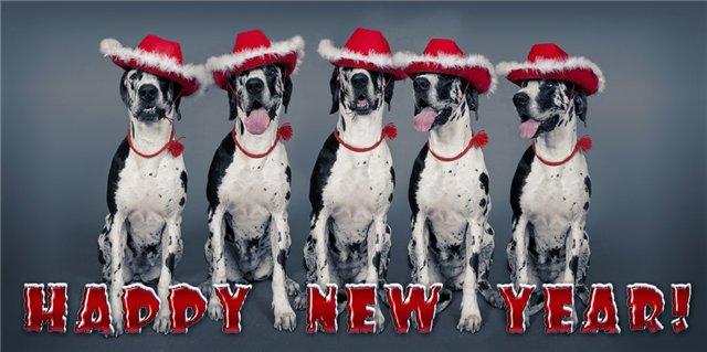 Поздравления с Новым годом!!! B6bd74d30cd0