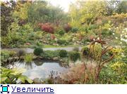 Cад Людмилы Ивановой из черкасс 88fbcb172a15t