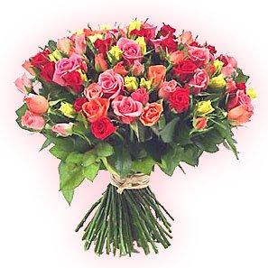 Поздравляем с Днем рождения Анну (Solnze) 50fe690678d6t