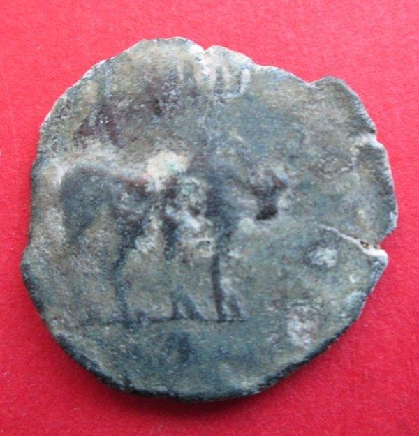 Semis Cartagonova 1f2a19bd78d7