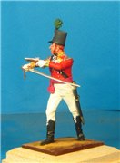 VID soldiers - Napoleonic british army sets 6db567ef0570t