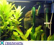 Внешники внутри аквариума Aeb4731c3b46t
