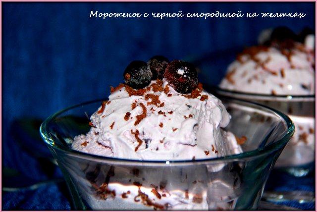Мороженое с черной смородиной на желтках (Brand 3812) 03f2d8c92791