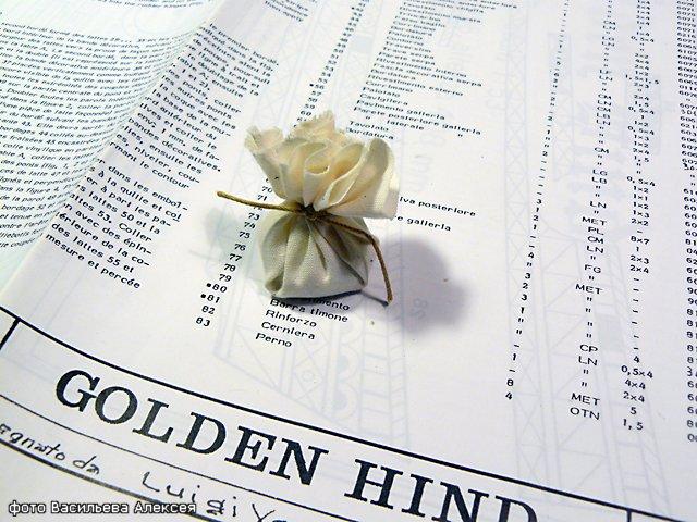Галеон GOLDEN HIND (Золотая лань) ЖЕЛЕЗНОГО ПИРАТА масштаб 1:53 28736c173504