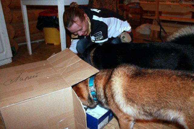 Недельные курсы повышения квалификации для собакообожак :-) Приглашаем всех!!! - Страница 3 2e155e0bb1d6