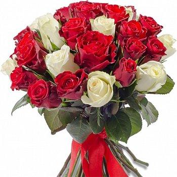 Поздравляем с Днем Рождения Елену (elenabiser) 34d0d3e0d865t