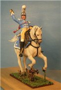 VID soldiers - Napoleonic french army sets Eb45a86c41b9t