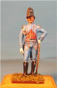 VID soldiers - Napoleonic french army sets 9f85f10477d2t