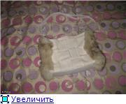 Фоксины Хендмейдики 8e4edbd24083t