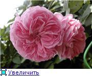 Specially for Karkela )))    Тестирование сербок и проч. - Страница 4 901ed1048d0dt