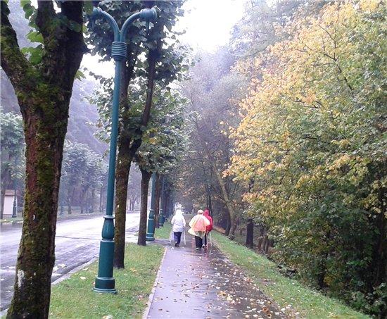 Осень, осень ... как ты хороша...( наше фотонастроение) - Страница 5 207f68186166