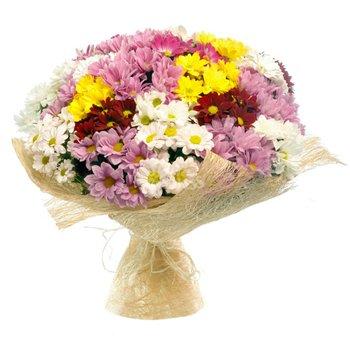 Поздравляем с Днем Рождения Алену (Алёна Малахова) A75f386b41edt