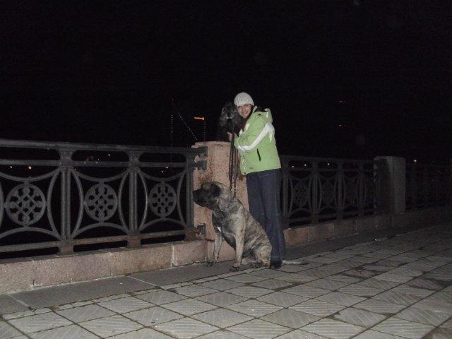 Собаки Татьяны Моисеенковой, кот Мензурка - Страница 3 F0e1943e93a6