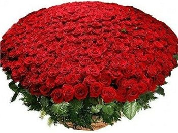 Поздравляем с Днем Рождения Ирину (Ирчик) 7d802e8955f2t