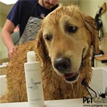 Интернет-зоомагазин Pet Gear - Страница 10 98004d899aadt