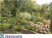 Cад Людмилы Ивановой из черкасс 3e73251cea71t