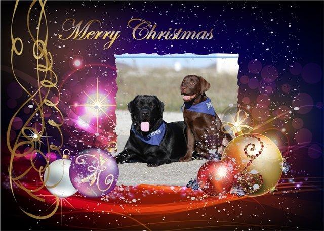 С наступающим Новым годом и Рождеством 2013 Ec8a95b9ceee