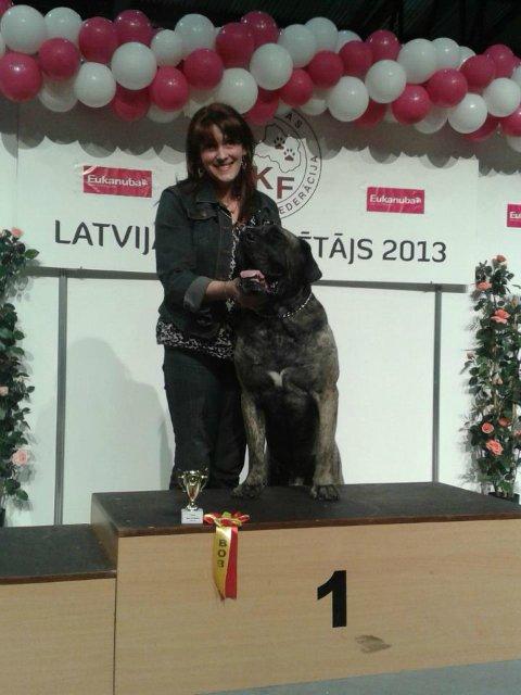 Наши собаки, друзья и гости, кот Мензурка - Страница 33 04ee6814a22f