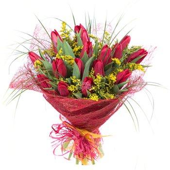 Поздравляем с Днем Рождения Ольгу (dnepr77) 7b1f91672aa4t
