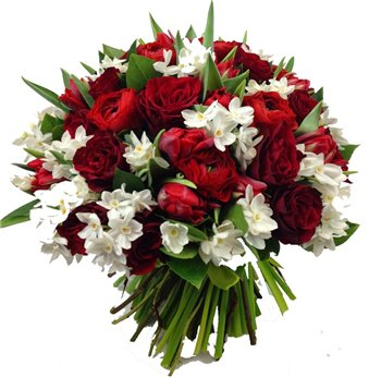 Поздравляем с Днем Рождения Светлану (svetlanka) 71e850ab38b4t