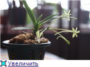 Sevgilim ( мои любимые) 8f101f88bbdet