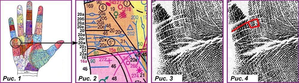 Основные, второстепенные, редкие линии и знаки 9c62ce7ba818