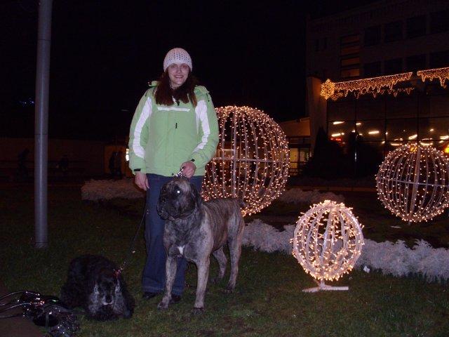 Собаки Татьяны Моисеенковой, кот Мензурка - Страница 3 5eb29eaffabf