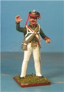 VID soldiers - Napoleonic russian army sets B1740d0179a5t