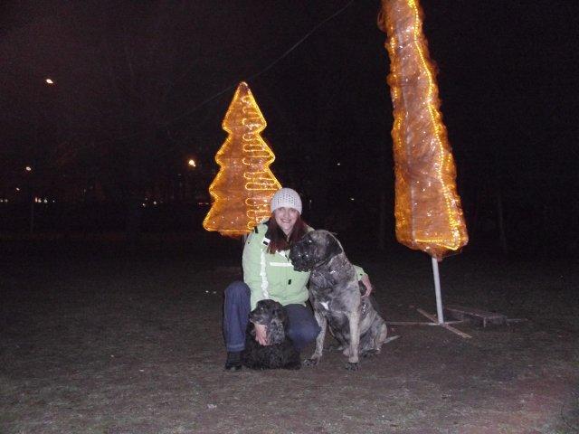 Собаки Татьяны Моисеенковой, кот Мензурка - Страница 3 555f63b2b0a0