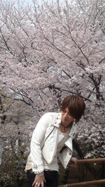 Shin photos - Страница 22 4f29c3d25b67