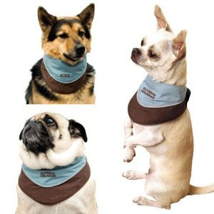 Интернет-зоомагазин Pet Gear - Страница 3 D0a3f59f8de8