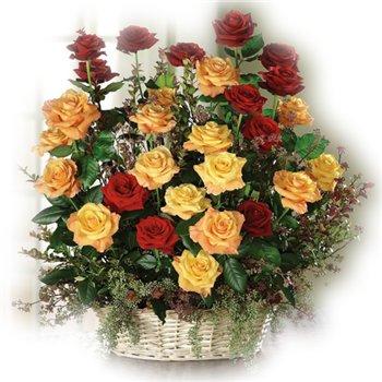 Поздравляем с Днем Рождения Ольгу (GuOlMi) 41bd78aac351t