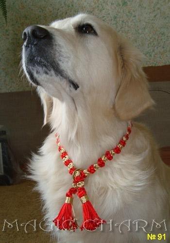 Magic Charm - ошейники, обереги, украшения и аксессуары для собак 2260fe7b7880