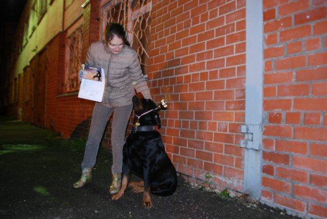 Ночные испытания собак в Латвии A46ca51ca53b