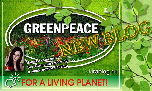"""Новый блог - Проект """"Greenpeace"""". 25.12.2015 34d688560546"""
