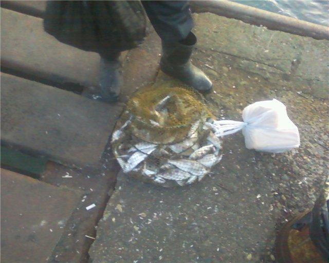 Рыбалка в Абхазии 1a685c76f60f