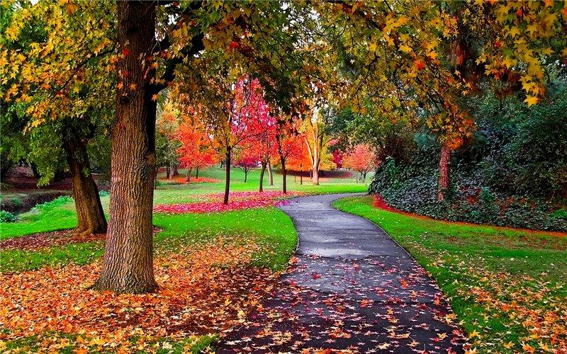 ბუნების ლამაზი ფოტოები Ecdd31609e9f