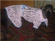 Одежда для животных F996537124a4t