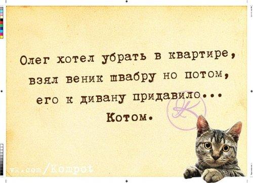 Сама по себе гулёна (о кошках) - Страница 2 D769cf5756ba