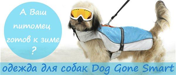 Интернет-зоомагазин Red Dog: только качественные товары для  - Страница 7 Ad250fd13f5d