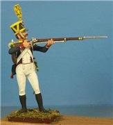 VID soldiers - Napoleonic french army sets 2563dd14b867t