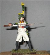 VID soldiers - Napoleonic french army sets 524d642f0591t