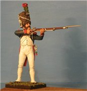 VID soldiers - Napoleonic french army sets 4f5d33bf6c11t