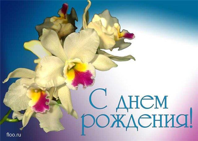 Оксану-Стервочку  днем рождения!!!!!!! 5627ee39f95b