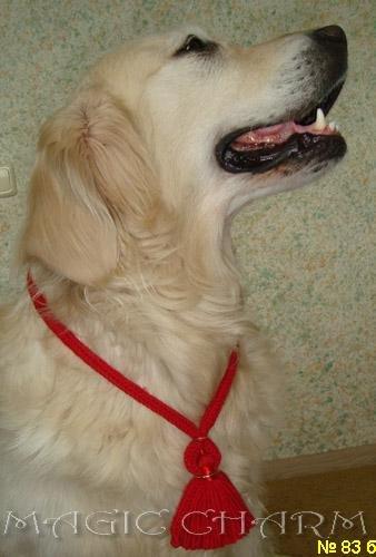 Magic Charm - ошейники, обереги, украшения и аксессуары для собак 17ce3483ec51